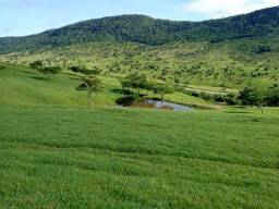 Fazenda em Anguera 35km de Feira de Santana obs: aceito caminhão, carro parte do pagamento