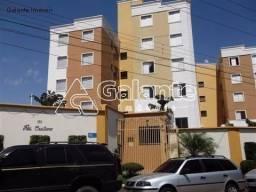 Apartamento para alugar com 3 dormitórios em Ponte preta, Campinas cod:AP004856