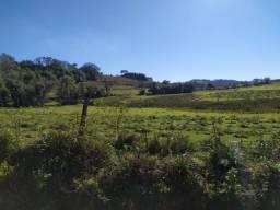 Sapiranga - 2 Hectares - Área Plana !!