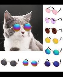 Óculos Pet para gatos e pequenos cães - Blythe