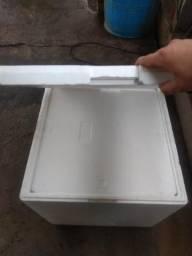 Caixa isopor 48L com placas de Gel