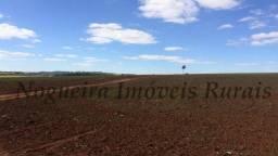 Fazenda com 48 alqueires, terra vermelha (Nogueira Imóveis Rurais)