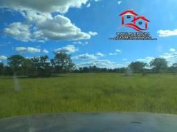 Fazenda No Tocantins Região de Lagoa da Confusão / TO