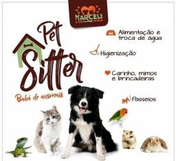 Título do anúncio: Cuidadora de pets - Pet Sitter