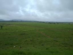 13.550 Há. c/ 7.445 Há. de Pasto (Dupla Aptidão). Sul do Pará