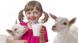 Vendo leite de cabra congelado. R$ 10,00