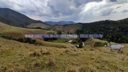Fazenda com 318 hectares,Casa colonial, Curral, pastagens formadas, em Rio Preto/MG