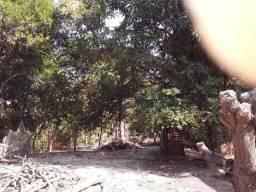 Casa com terreno pindai