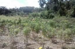 Terreno 100 X 100 documentado pronto para chácara no Bujari