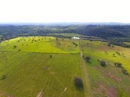 Fazenda 2.125 há (439 alq) melhores fazendas no norte do TO para o Agronegócio