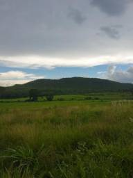 Fazenda 116 hectare sem benfeitoria