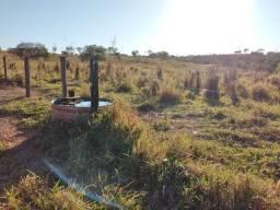 42 hectares porteira fechada