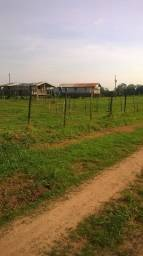 Fazenda na vazea em iraduba