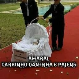 ALUGUEL CARRINHO DAMINHA E PAJEM PARA CERIMÔNIA DE CASAMENTO