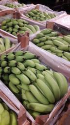 Banana climatizada