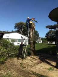 Poda, corte de árvores limpeza de terrenos