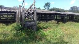 Sítio no Pará,20 hectares com pasto, curral, casa ,igarape por 250 mil reais