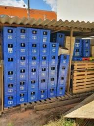 Título do anúncio: caixas com vasilhames, litrão Ambev