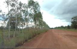 Fazenda de 65 alqueires na região de Dois Irmãos