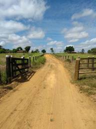 Fazenda toda aberta 50 alqueires px Marabá