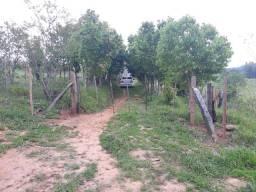 03 hectares para morar na tranqüilidade do interior