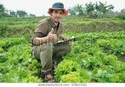 Título do anúncio: FN crédito para agricultores