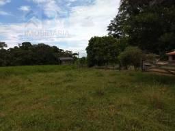 grande oportunidade, Vendo essa fazenda em Primavera de Rondonia