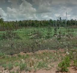Sítio 50 hectares