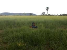 Excelente fazenda à venda na cidade de Alta Floresta do Oeste/RO