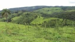 Excelente fazenda com 126 alqueires em Campo Largo