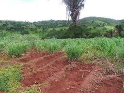 Fazenda 6.5 Aqueires Municipio Cocalzinho