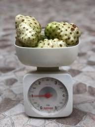 Noni - Fruta 1kg
