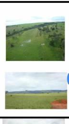 Guiratinga MT 6.000. ha