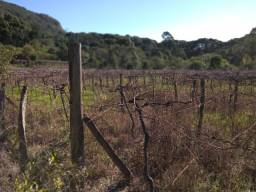 Sítio de 7.2 hectares em Gramado