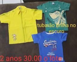Camisas infantis 2 anos lote