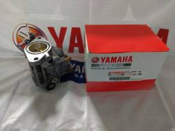 Carburador para o motor de popa 40X