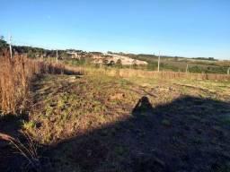 Terreno à venda em Cara-cara, Ponta grossa cod:V5706