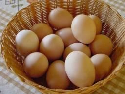 Ovos coloniais