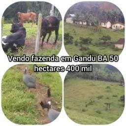 Vendo fazenda em Gandu BA