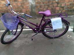 Bicicleta poty roxa