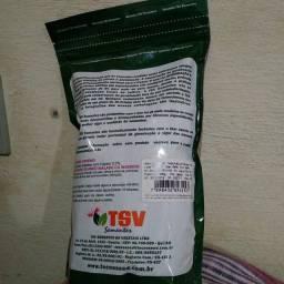 Vendo sementes de híbrido de abóbora cabutia e moranga