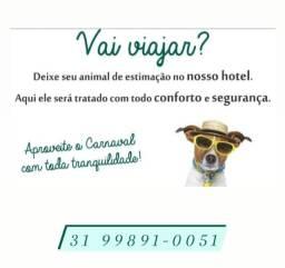 Hotel para pets