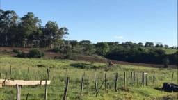 Caseiro, serviços rurais, agricultura, campo.