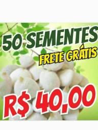 50 sementes de nozes