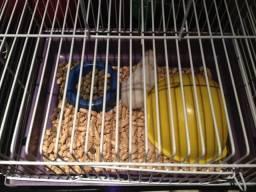 Hamster com gaiola e apetrechos