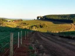 Fazenda de 66 Alqueires .53 Alqueires Mecanizados - 17 KM de Cantagalo PR
