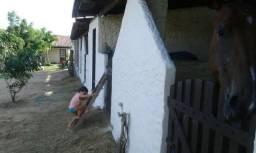 Granja em pium , casa, poço, baías, murada