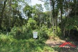 Terreno limpo c/192m², r$8.800,00 + 84x de r$ 599,01. baln. palmeiras