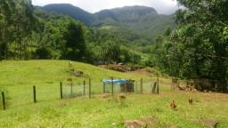 Linda Chácara com 5 hectares