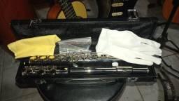flauta transversal struss  zerinha com case  troco ou parcelo